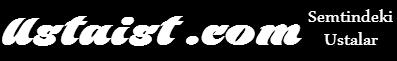 ustaist logo resim